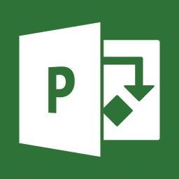 Microsoft Project Professional All Lng LicSAPk OLV No Level AP w/1 ProjectSvr CAL 1 Year