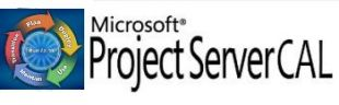 Microsoft Project Server CAL All Lang LicSAPk OLV NL 1Y AP UsrCAL