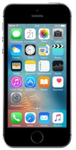 Apple iPhone SE 64Gb Space Gray MLM62RU/A