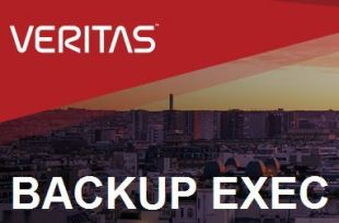 Veritas Backup Exec Ent Svr Opt Win 1 Svr Onprem Std Lic +