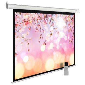 Экран Cactus CS-PSME-220X220-WT 1:1 настенно-потолочный рулонный белый (моторизованный)