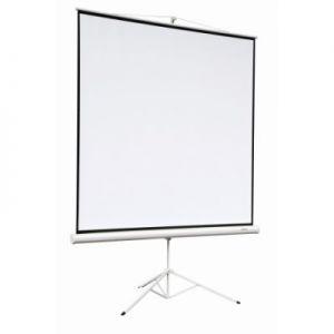Экран Digis Kontur-A DSKA-4305 (4:3) 240*180 см, MW , мобильный, на штативе
