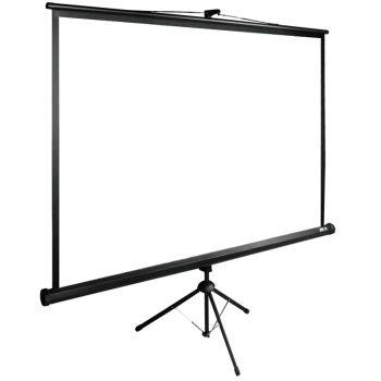 Экран Cactus CS-PSTE-160X160-BK 1:1 напольный рулонный
