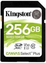 Kingston SDS2/256GB