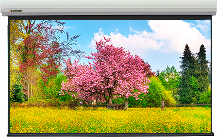 Экран Lumien LMLC-100105 Master Large Control 324*560 16:9, стальной корпус