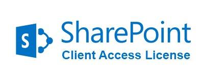 Microsoft Право на использование (электронно) Microsoft SharePoint Standard CAL 2019 Sngl OLP NL UsrCAL (76M-01689)