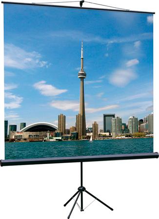 Экран Lumien LEV-100101 Eco View 150*150 1:1, с возможностью настенного крепления
