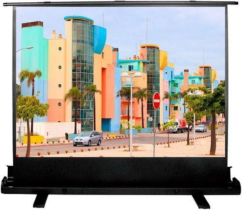 Экран Cactus CS-PSFLE-160X120 FloorExpert, 4:3, напольный рулонный