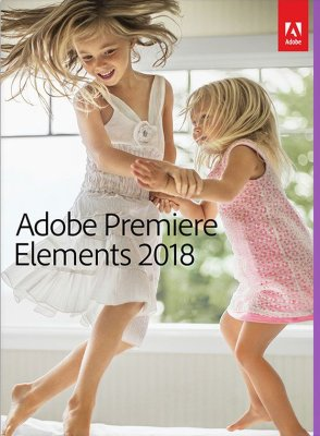 Adobe Право на использование (электронно) Adobe Premiere Elements 2018 Windows Russian AOO License TLP (65282017AD01A00)