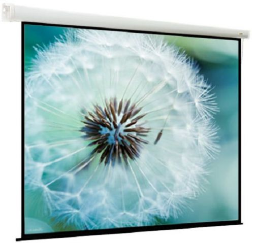 Экран Viewscreen Breston EBR-1109 моторизированный (1:1) 220*220 (212*212) MW