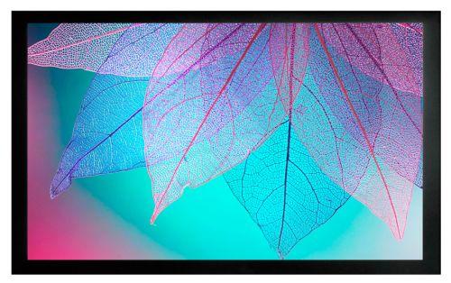Экран Cactus CS-PSFRE-220X124 на раме, FrameExpert, 16:9, настенно-потолочный натяжной