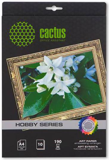 Cactus CS-DA419010