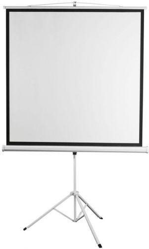 Экран Digis DSKD-1105 Kontur-D, формат 1:1, 100