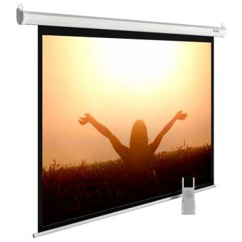 Экран Cactus CS-PSME-220X165-WT 4:3 настенно-потолочный рулонный белый (моторизованный)