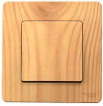 Schneider Electric BLNVS010105