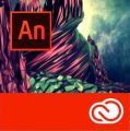 Adobe Animate CC / Flash Professional CC for enterprise 12 Мес. Level 1 1-9 лиц.
