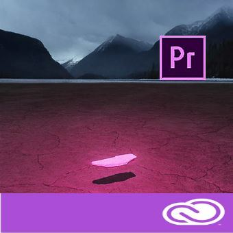 Adobe Premiere Pro CC for enterprise 12 мес. Level 2 10 - 49 лиц.