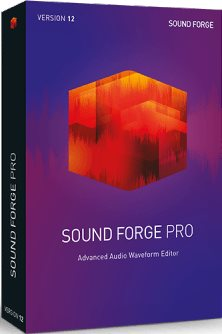 MAGIX Sound Forge Pro 12 ESD