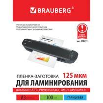 BRAUBERG 530799