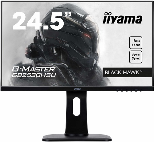 Iiyama G-Master GB2530HSU-1