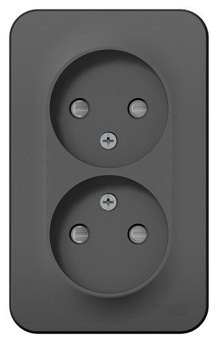 Розетка Schneider Electric BLNRA001216 2-ая б/з со шторками 16А, 250В, изолир. пластина Антрацит наруж розетка 2 ая se blanca наруж титан с з со шторками 16а 250в изолир пластина арт se blnra011214