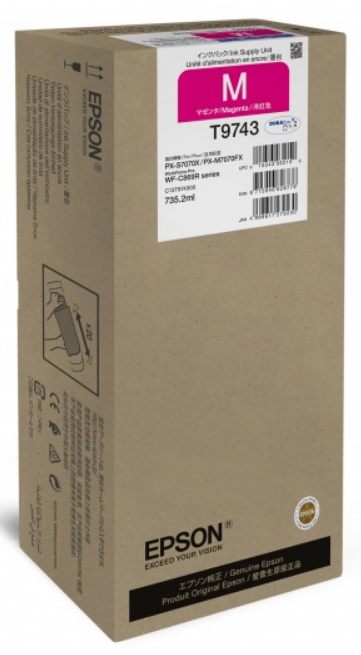 Epson C13T974300