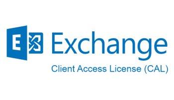 Microsoft Право на использование (электронно) Microsoft Exchange Enterprise CAL 2019 Sngl OLP NL UsrCAL woSrvcs (PGI-00879)