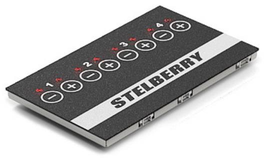 Stelberry MX-300