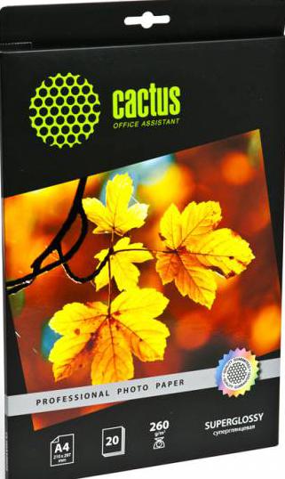 Cactus CS-HGA426020