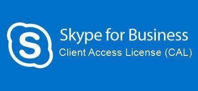 Microsoft SfBSVrEnCAL ALNG LicSAPk OLV NL 1Y AP DvcCAL