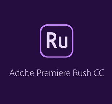 Adobe Premiere RUSH for enterprise 12 мес. Level 1 1 - 9 лиц.