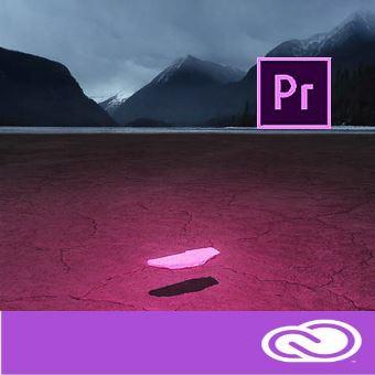 Adobe Premiere Pro CC for enterprise 12 мес. Level 3 50 - 99 лиц.