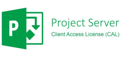 Microsoft Project Server CAL 2019 Sngl OLP NL DvcCAL