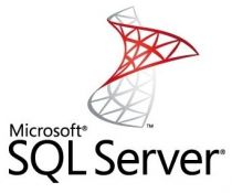 Microsoft SQL Server Standard 2019 English DVD 10 Clt