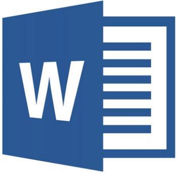 Microsoft Word 2019 Single OLP NL