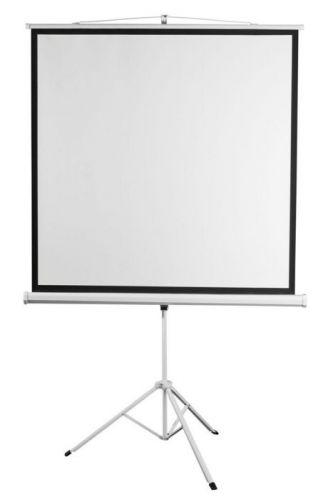 Экран Digis DSKD-1103 Kontur-D, формат 1:1, 84