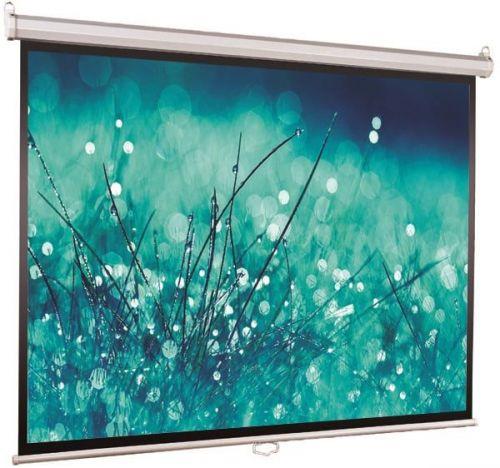 Экран Viewscreen Scroll WSC-1106 ручной (1:1) 220*220 (220*220) MW