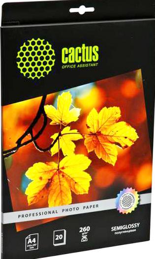 Cactus CS-SGA426020