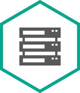 Kaspersky Security для систем хранения данных, Server. 4 FileServer 2 year Renewal