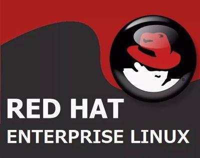 ПО (электронно) Red Hat Enterprise Linux Server Entry Level Self-support.