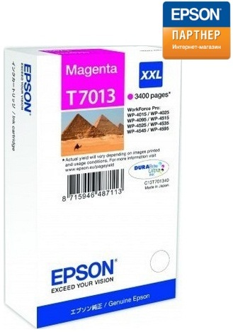 Epson Картридж Epson C13T70134010