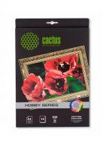 Cactus CS-CA426010