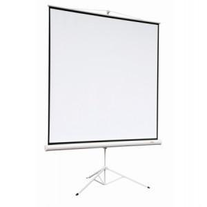 Экран Digis Kontur-A DSKA-1101 (1:1) 160*160 см, MW , мобильный, на штативе недорого