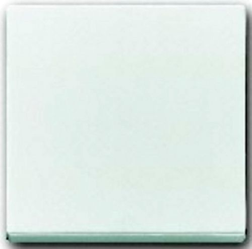 Клавиша ABB 2CKA001751A3074 1-ая белая