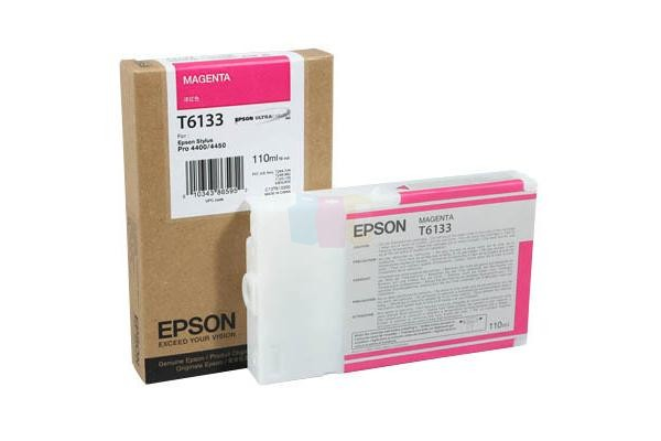 Epson C13T613300