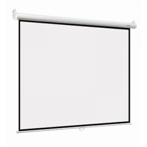 Экран Digis Optimal-B DSOB-4305 (4:3) 240*180 см, MW , настенный