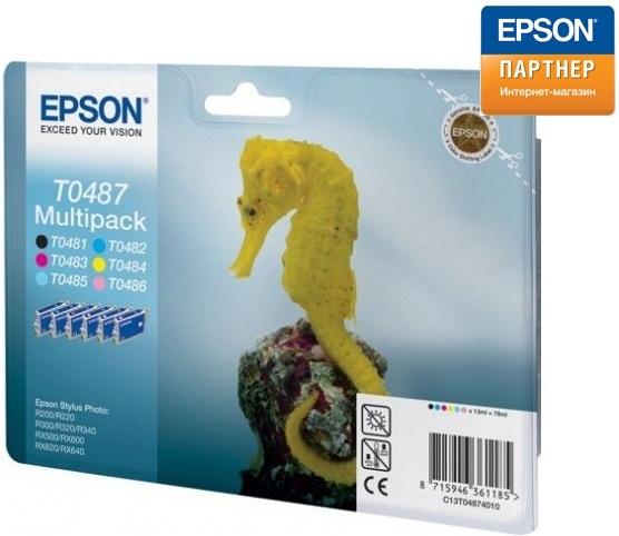 Epson C13T04874010