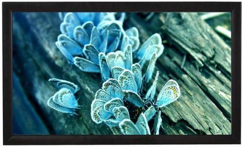 Экран Viewscreen Omega OMG-16905 натяжной (16:9) 381*219 (356*203) MW