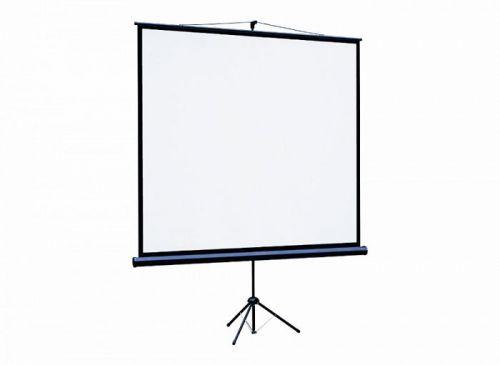 Экран Lumien LEV-100109 Eco View 220x220см (раб.область 214х214 см) Matte White с возможностью настенного крепления 1:1