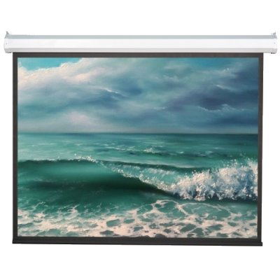Экран Viewscreen Antis EAN-16104 моторизированный (16:10) 874*600 (862*538) MW